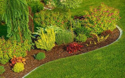 Want Your Yard as Beautiful as Your Remodeled Home